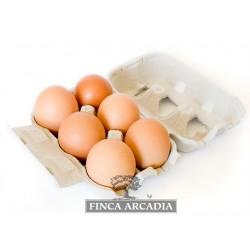 Huevos Ecologicos Extrafrescos